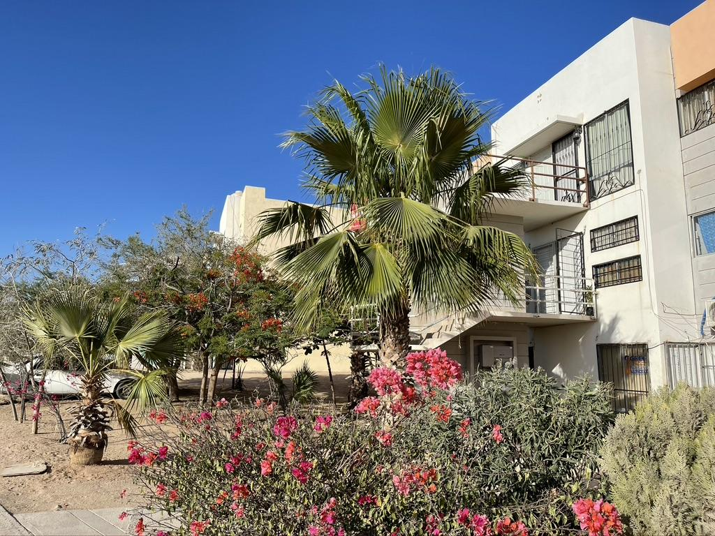 302 Sierrra De Calastre, Cabo San Lucas,  23450