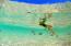 SNORKEL IN THE SEA OF CORTEZ