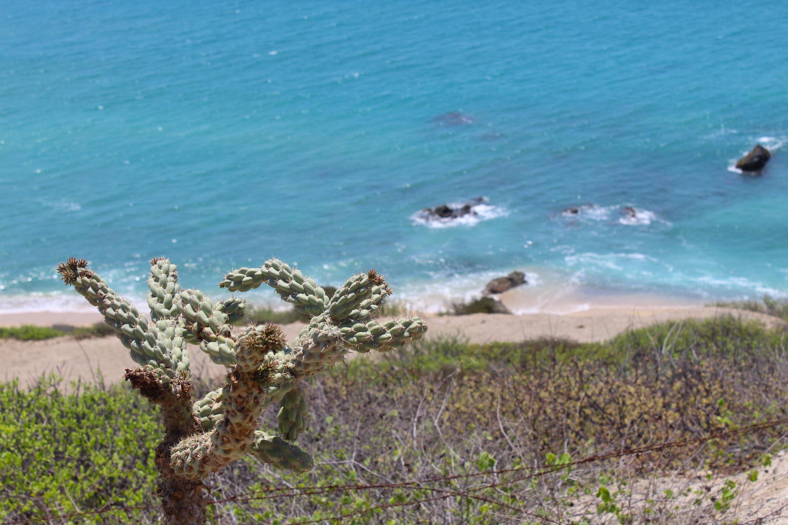 9 Palms Developer Land Reserve-5