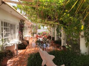 Baja California y Nicolas Brav, Casa Paraiso Centenario, La Paz,