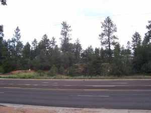 17 E Hwy 260, Star Valley, AZ 85541