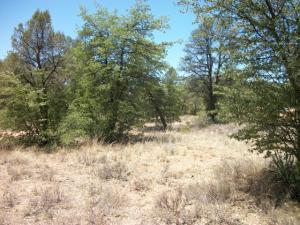 404 S Forest Ridge Court, Payson, AZ 85541