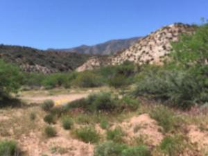 84C W Ocotillo, Tonto Basin, AZ 85553