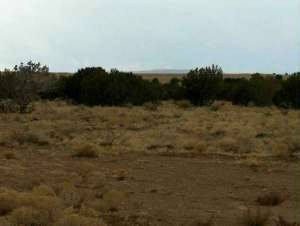 Lot 631 Chevelon Canyon Ranch, Overgaard, AZ 85933