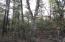 Lot 48 E Fossil Way, Christopher Creek, AZ 85541
