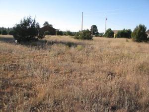 2216 Meadow Lane, Overgaard, AZ 85933