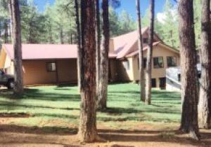 2397 TURKEY Trail, Forest Lakes, AZ 85931