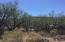 C2A S Canyon Ridge Drive, Tonto Basin, AZ 85553