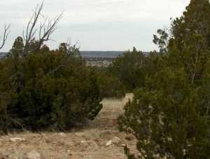 Lot 302 Chevelon Canyon Ranch, Overgaard, AZ 85933