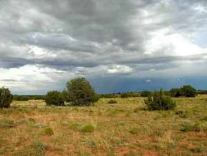 Lot 321 Chevelon Canyon Ranch, Overgaard, AZ 85933