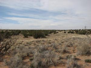 Lot 632 Chevelon Canyon 4 6002 WideSky, Overgaard, AZ 85933