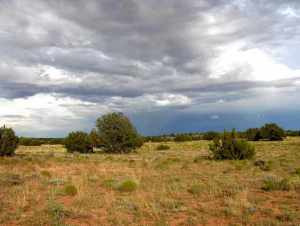 Lot 650 Chevelon Canyon Ranch, Overgaard, AZ 85933