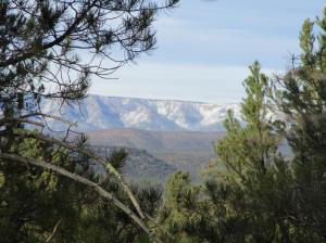 411 S Whisper Ridge Lane, Payson, AZ 85541