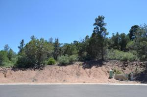 812 W Green Valley Circle, Payson, AZ 85541