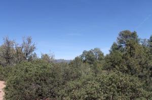 400 S Decision Pine, Payson, AZ 85541