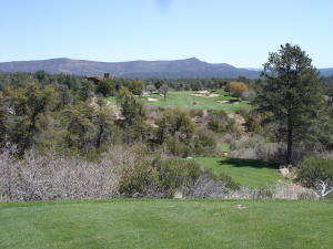 2701 E Wild Rose Circle, Payson, AZ 85541