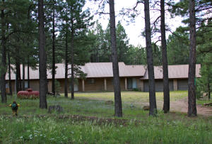 1714 Mineral Drive, Forest Lakes, AZ 85931