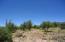 Lot 31 Coues Deer Ln., Payson, AZ 85541
