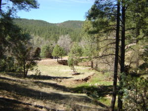 142 Hunter Creek Drive, Payson, AZ 85541