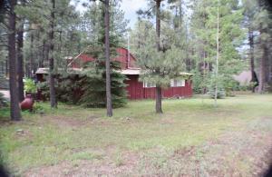 1633 Little Pine Trail, Forest Lakes, AZ 85931