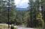 42 Homestead Lane, Christopher Creek, AZ 85541