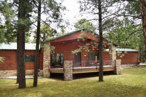 2793 VACATION Drive, Forest Lakes, AZ 85931