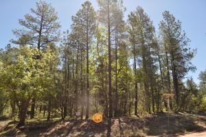 28 Pine Way, Payson, AZ 85541