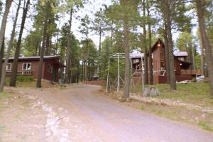 3076 Summer Loop, Forest Lakes, AZ 85931