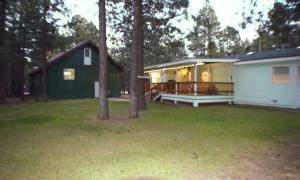 1754 Wildcat Road, Forest Lakes, AZ 85931