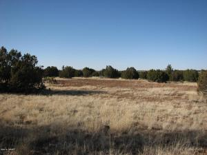 Lot 297 Chevelon Canyon Ranch #3, Overgaard, AZ 85933
