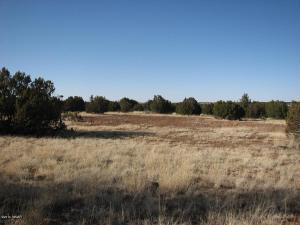 Lot 297 Chevelon Canyon Ranch #3, Overgaard, AZ 85933