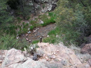 13 W Elk Song Trail, Payson, AZ 85541