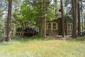 1075 E Ranch Road, Christopher Creek, AZ 85541