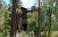 265 Homestead Lane, Christopher Creek, AZ 85541