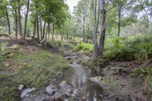 Lot 3 Bonita Creek, Payson, AZ 85541