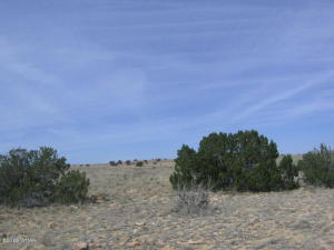 Lot 367 Chevelon Canyon Ranch #3, Overgaard, AZ 85933