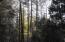 207 S Lookout Trail, Payson, AZ 85541