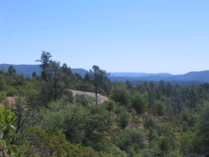 2401 E Feather Plume Lane, Payson, AZ 85541