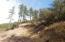 5175 Bear Flat Road, Payson, AZ 85541
