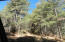Backs to USFS. 1.24 Acres of sloping, heavily pine-treed Vacant Land.