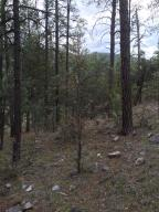 Lot 130 Hunter Creek Drive, Payson, AZ 85541