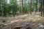 112 S Indian Trail, Christopher Creek, AZ 85541