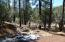 Lot 4C E Running Elk Road, Christopher Creek, AZ 85541