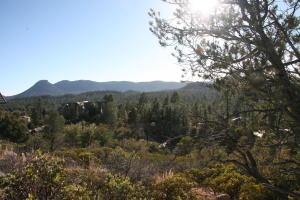 106 E Pine Ridge Drive, Payson, AZ 85541