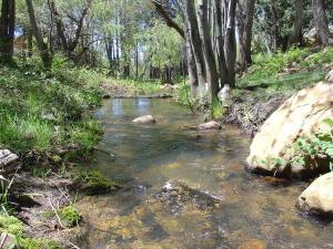40B & 40C Myrtle Point Trail, Payson, AZ 85541