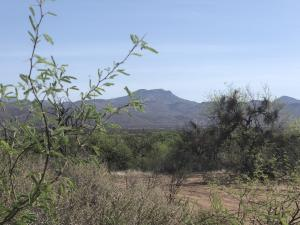 TBD N SR 188 Highway, Tonto Basin, AZ 85553