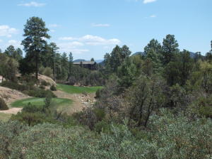 1005 N Indian Paintbrush Circle, Payson, AZ 85541
