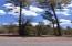 3479 N Wilderness Trail, Pine, AZ 85544