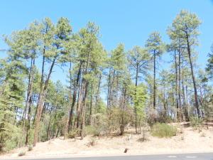 401 N Grapevine Drive, Payson, AZ 85541