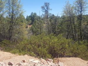 2403 E Feather Plume Lane, Payson, AZ 85541